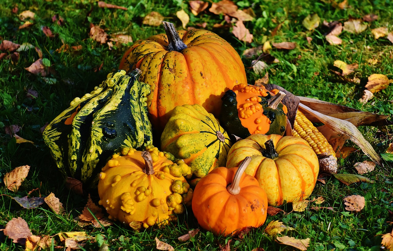 Pittsburgh Fall Events